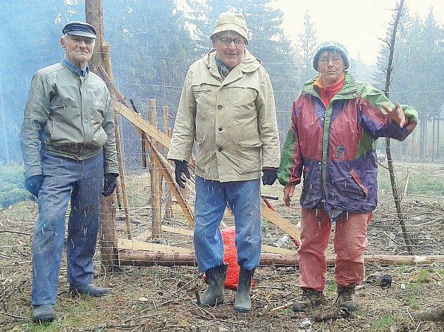 Příbramští turisté na brigádě v Brdech při sázení stromků.