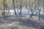 Na dopadové ploše v Brdech hořely náletové dřeviny, vřes a borůvčí. Hasiči museli vodu náročně k ohniskům požáru dopravovat.