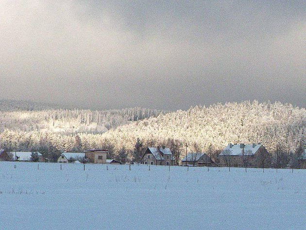 Zima v přírodě.
