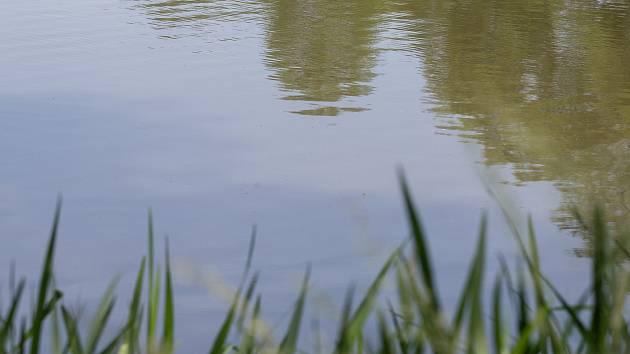 Kvalita vody. Ilustrační foto.