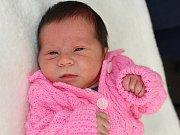 VERONIKA KUBÁTOVÁ se narodila v pondělí 2. ledna, sestřičky jí v ten den navážily 3,03 kg a naměřily 48 cm. Radost z  dcerky mají rodiče Lucie a Tomáš z Příbrami.