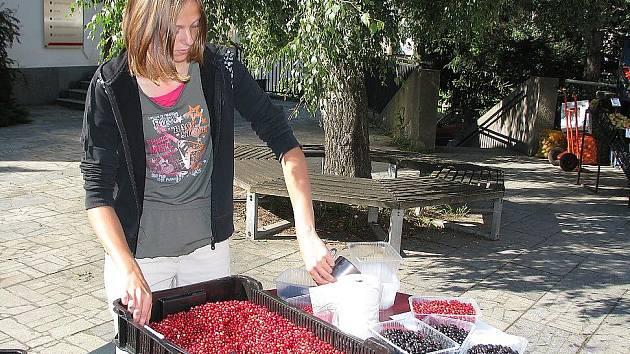 Prodej lesních plodů v Příbrami