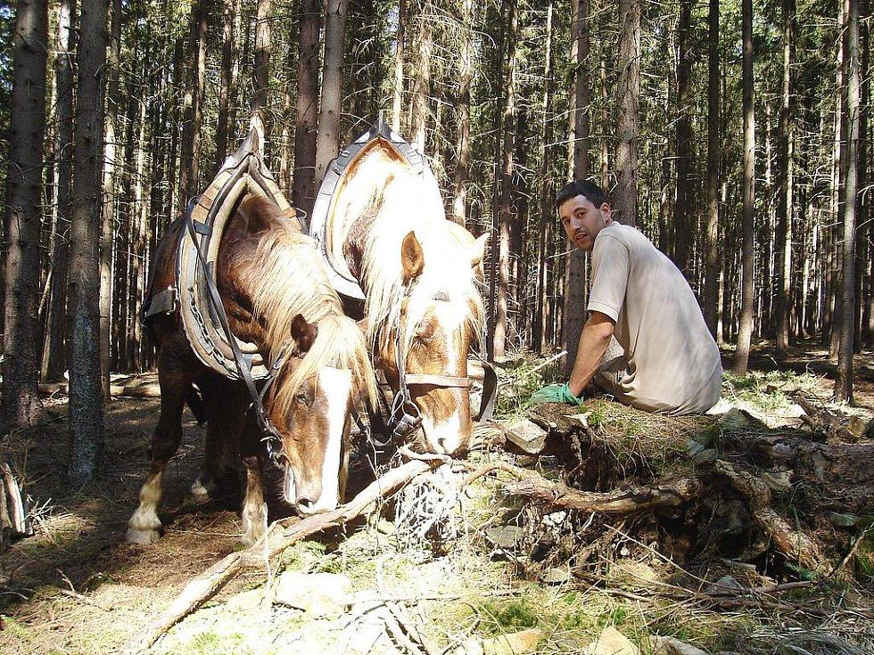 Lukáš Kozma při práci v lese.