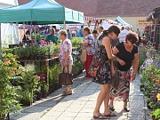 Oblíbené farmářské trhy  jsou hodně navštěvované.