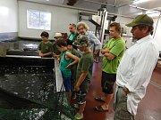 Mladí rybáři z Rožmitálu zápolili O Blatenského kapra
