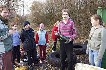 Mladí ochránci přírody při úklidu Brd. Ilustrační foto.