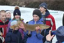 Rybářský kroužek z Rožmitálu pod Třemšínem využil při své poslední schůzce mrazivého počasí a vyrazil s dětmi na lov na dírkách.
