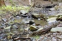 Potok protékající údolím V zabitých.