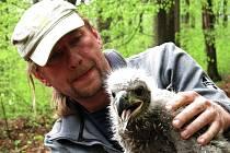 Mládě orla mořského narozené v Brdech navštívilo Moravu.