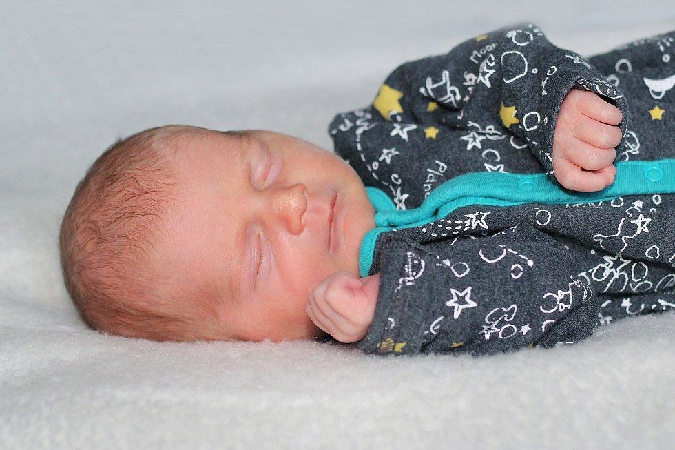 Sebastian Oberfalcer se narodil 25. listopadu 2019 v Příbrami. Vážil 3100 g a měřil 52 cm. Doma v Kácini ho přivítali maminka Tereza, tatínek David a dvouletá sestra Charlottka.