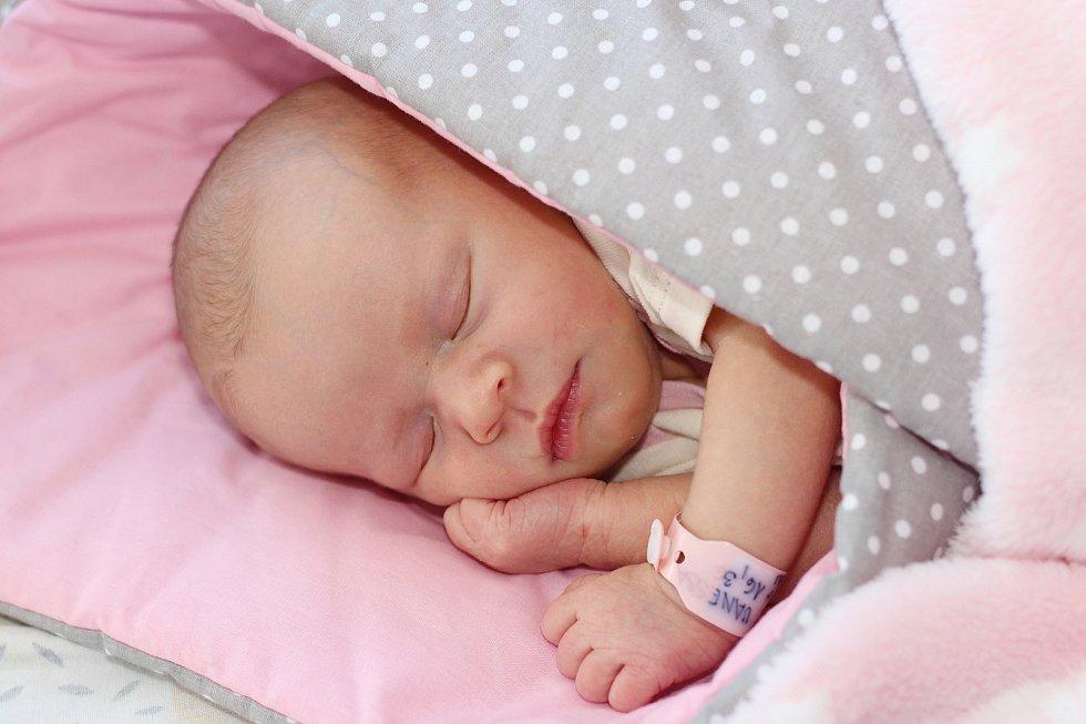 Vanessa Pejchlová se narodila 24. ledna 2020 v Příbrami. Vážila 2840 g a měřila 48 cm. Doma v Sedlčanech ji přivítali maminka Eliška s tatínkem Ondřejem.
