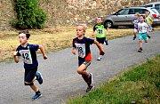 Již posedmnácté se konal v neděli 7. července běh do vrchu Lochovice - Plešivec.