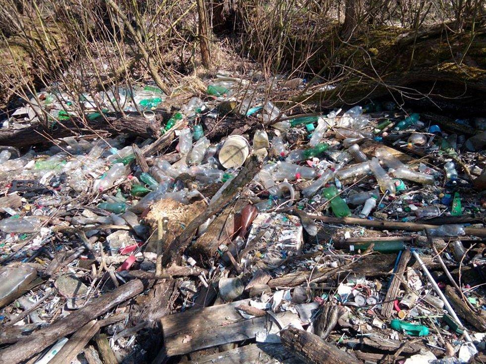 V rybníku Koryto v Dobříši se při jeho nynějším výlovu ukázaly stovky PET lahví. Dobrovolníci z dobříšského okrašlovacího spolku jich již část odstranili.