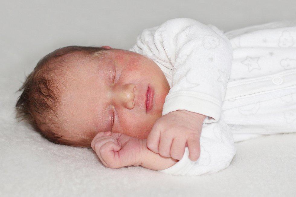 Sofie Jelínková z Nečíně, narozená 8. ledna 2019 rodičům Veronice a Janovi s váhou 3460 g a mírou 50 cm.