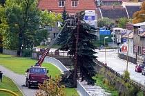 Kvůli tomu, že starý smrk ohrožoval kolemjdoucí, motoristy i okolní majetek musel být pokácen.