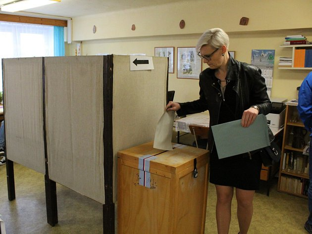 Volby do Evropského parlamentu 2019 ve Středočeském kraji