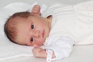 Adéla Hamplová ze Skrýšova, narozená 30. září 2019, vážila 3120 g, rodiče Zdeňka a Jiří.