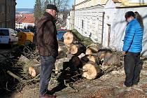 Ředitel Technických služeb Příbram Pavel Mácha (vlevo) s opozičním zastupitelem Petrem Karešem debatují nad pokáceným stromem.