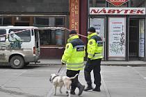Městská policie Příbram, psovodi v Křižáku.