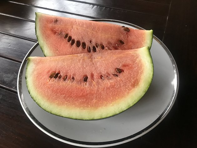 Pěstitelka na fotografiích zachytila postup růstu melounů až ke sladké a šťavnaté dužině.