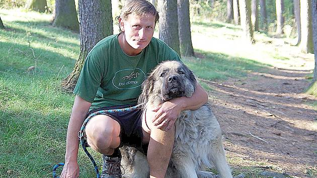 PROCHÁZKA lesem. Vedoucí Domova Fauny v Hrachově Karel Stehlík se svou kavkazandou Fibinkou.