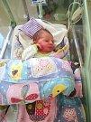 Matyášek Vydra se narodil 15. listopadu 2018 s váhou 3,8 kg a mírou 49 cm z Homole.