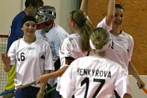 Příbramská florbalová liga: Mobydicks - Žraloci Příbram ženy.