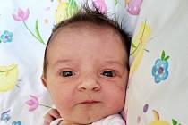 Nina Čandová, Líchovy. Narodila se 6. dubna 2020. Po porodu vážila 3,40 kg a měřila 51 cm. Rodiče jsou Zuzana a Pavel Čandovi. (porodnice Příbram)