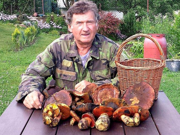 S letošní první nadílkou hřibů kovářů se Příbramskému deníku ale mohl už pochlubit Vladimír Pikart z Hubenova (na snímku), který červnovou houbařskou sezonu zahájil v lesích u Borotic.