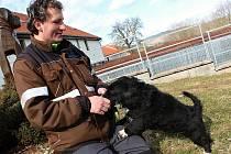 Vedoucí hrachovského útulku Karel Stehlík s jedním ze psů před každodenní procházkou.