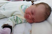 Tereza Typtová se Lence a Janovi narodila 21. března 2020 v 18.41 hodin v benešovské porodnici. Vážila 4160 gramů a měřila 53 centimetrů. Doma v Chotěticích se z ní těší i dvouletý bráška Josífek.