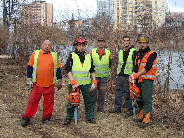 Revitalizace zeleně na Hořejší Oboře