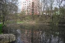 Čekalíkovský rybník čeká na svou obnovu už řadu let.