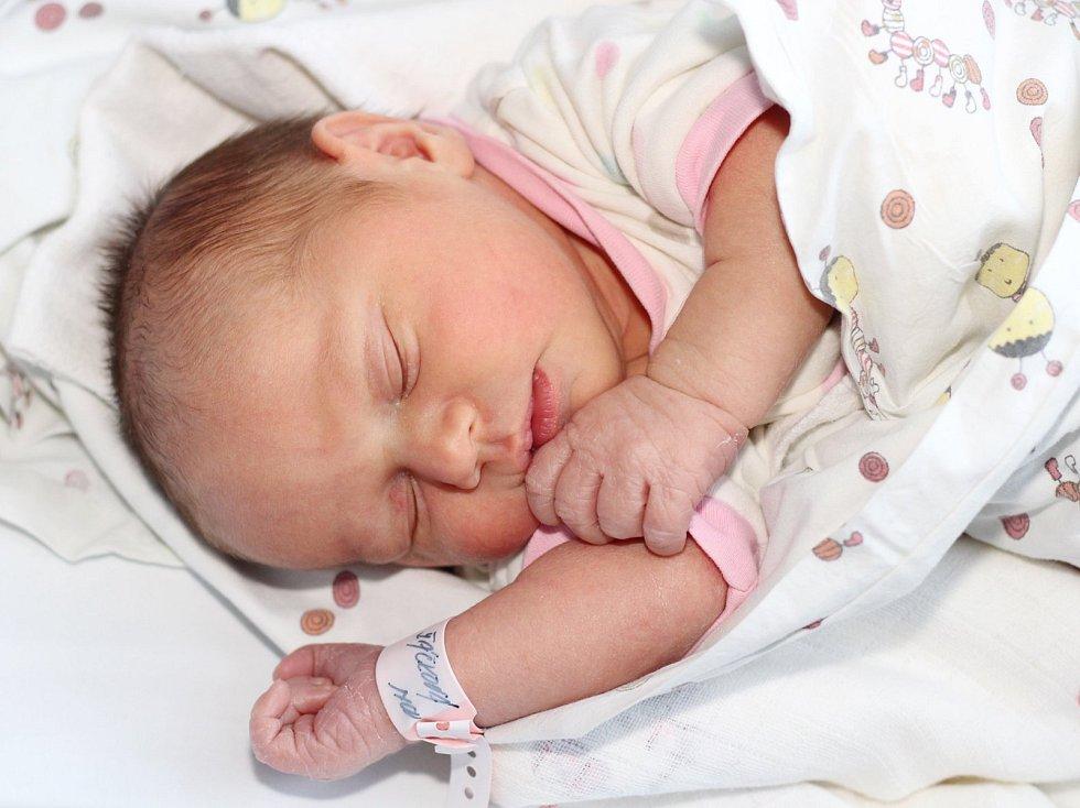 Emílie Žáčková z Dobříše se narodila 8. ledna 2019 rodičům Denise a Ondřejovi a vážila 3360 g.