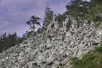 Přírodní památka Hřebenec v jižních Brdech.