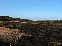 Ve středu 18. dubna při střelbách shořelo na dopadové ploše Brda několik desítek hektarů za bezvětrného počasí (v téměř ideální dobu z pohledu živočichů) a za asistence pouze hasičů Armády ČR.