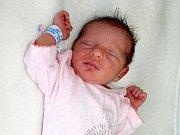ANABEL HERMÍNA NOVOTNÁ se mamince Hermíně z Příbrami narodila v neděli 12. února o váze 2,53 kg a míře 47 cm.