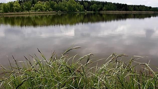 Padrťský rybník ve Vojenském újezdu Brdy.