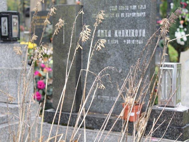 Zapomenutý hrob na příbramském hřbitově.