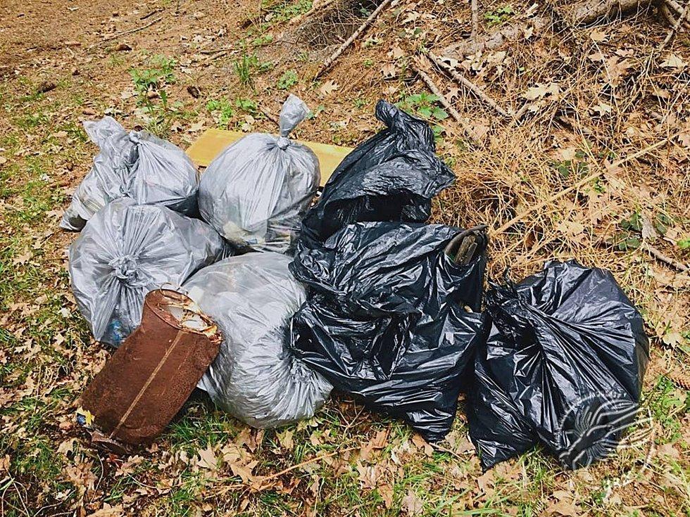 Úklid odpadků v Chráněné krajinné oblasti Brdy. Dobrovolníci vyčistili okolí spojovací komunikace mezi Obecnicí, Zaječovem a Neřežínem.