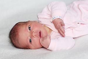 Marie Čandová z Kamýku nad Vltavou, narozená 12. ledna 2019 rodičům Martinovi a Kristýně, vážila 3600 g a měřila 51 cm, doma má sestru Aničku (2).