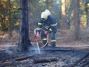 Hořel les u Dolejšího padrťského rybníku v CHKO Brdy
