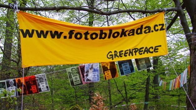 Členové hnutí Greenpeace jsou od pondělí na kótě 718 v Brdech. Mezi stromy visí fotky lidí, kteří nesouhlasí s umístěním radaru.