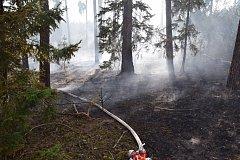 Požár lesní školky u Kozárovic.