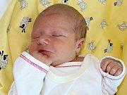 ALBERT NÁDVORNÍK se narodil v pátek 4. srpna o váze 3,30 kg a míře 50 cm rodičům Lucii a Petrovi z Dobříše. Z brášky se raduje Adámek.