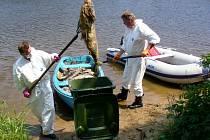 Hasiči vylovili ze Slapské přehrady tuny mrtvých ryb.
