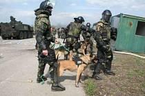 Do Kosova se chystá 13. kontingent českých vojáků.