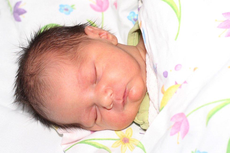 Filip Plank se narodil 26. listopadu 2019 v Příbrami. Vážil 3180 g a měřil 49 cm. Doma v Porubě ho přivítali maminka Jana, tatínek Štěpán a desetiletá sestra Natálka.