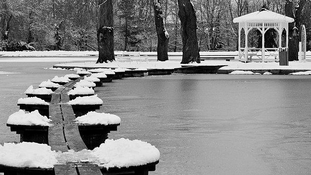 Zima na Novém rybníku.