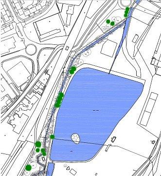 Revitalizace zeleně v okolí Nového rybníku